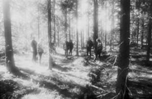 in the woods... blog o muzyce metalowej