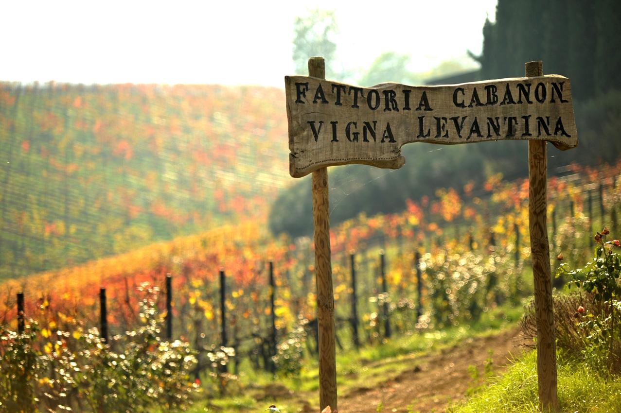wina włoskie organiczne - Piwnica Cabanon