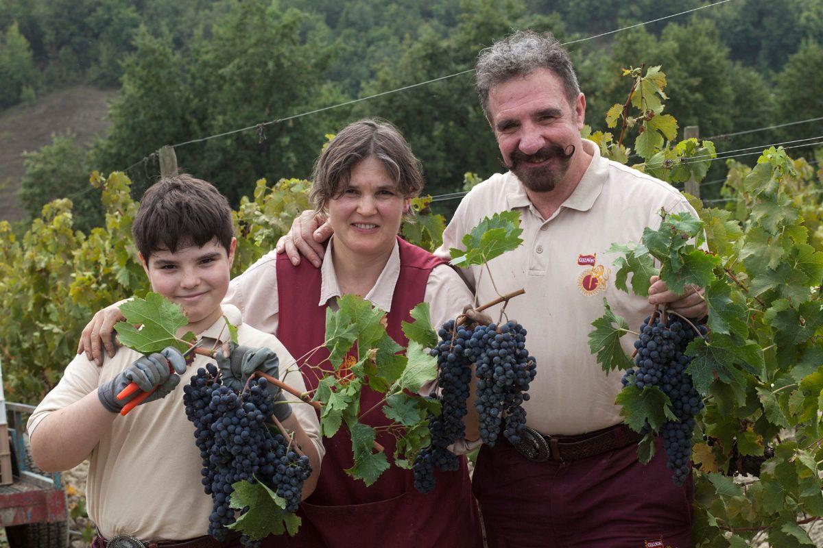 wina włoskie sklep Zielona Góra