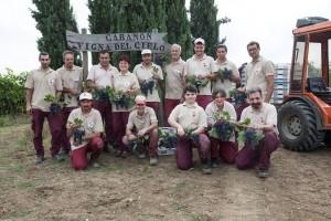 wino włoskie organiczne sklep Zielona Góra winnica