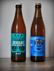 blog o piwach świata