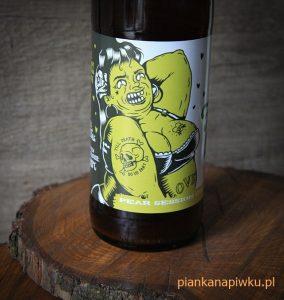 piwo kraftowe rzemieślnicze blog o piwach