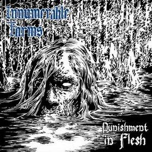 Innumerable forms - Punishment in flesh - blog o muzyce alternatywnej, metalowej, recenzje płyt
