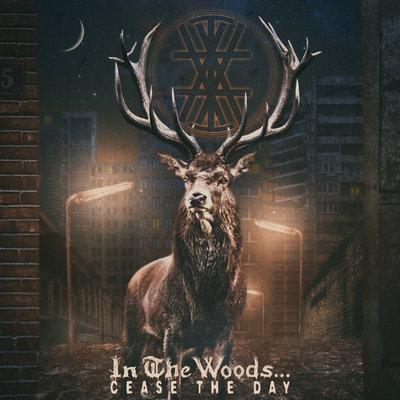 In the Woods - cease the day - blog o muzyce alternatywnej, metalowej, recenzje płyt